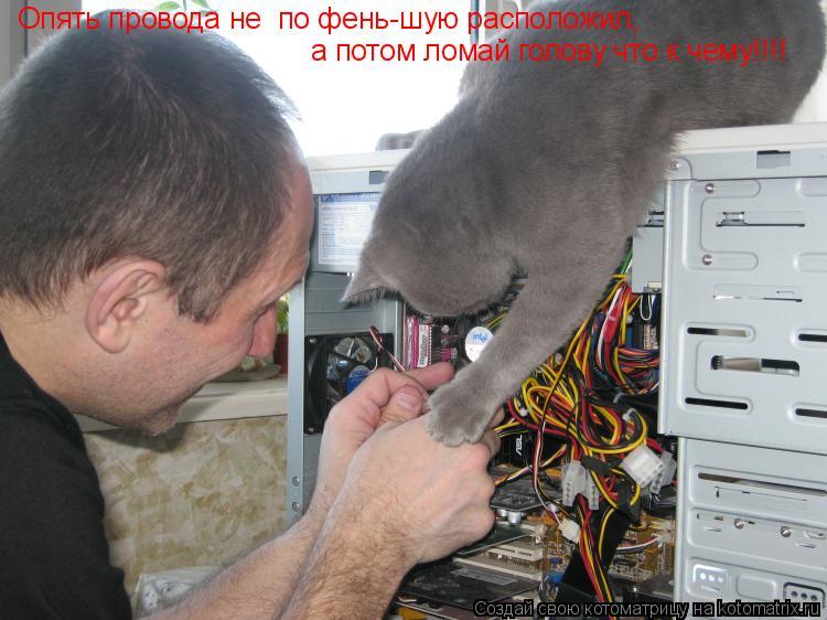 Котоматрица: Опять провода не  по фень-шую расположил,  а потом ломай голову что к чему!!!!
