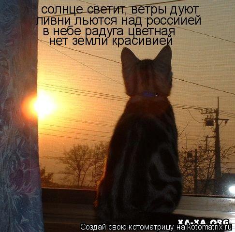 Котоматрица: солнце светит, ветры дуют ливни льются над россиией в небе радуга цветная  нет земли красивией