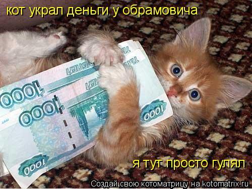 Котоматрица: кот украл деньги у обрамовича я тут просто гулял