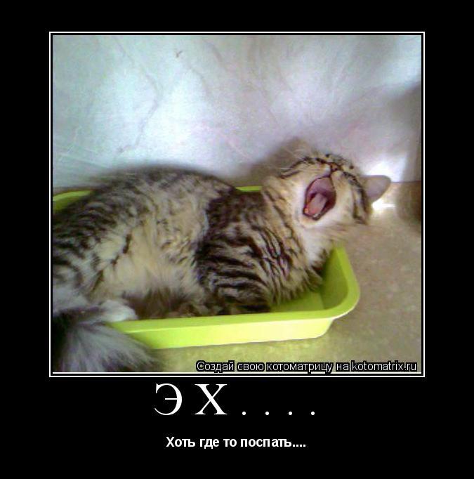 Котоматрица: Эх.... Хоть где то поспать....