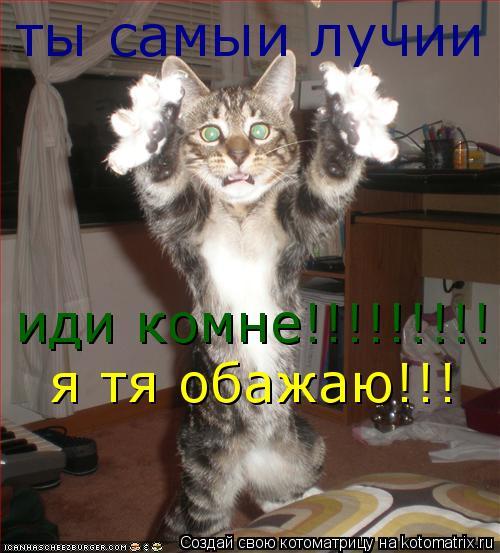 Котоматрица: иди комне!!!!!!!!!!!  я тя обажаю!!! ты самыи лучии !!!!!!!!!!!