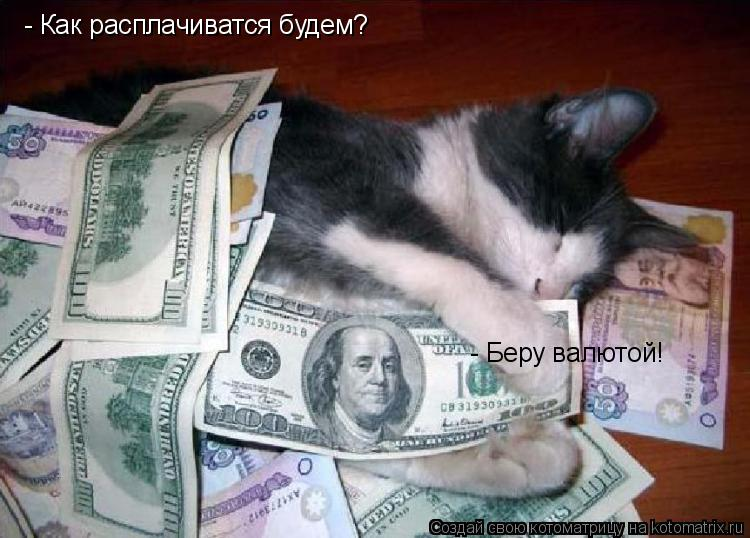 Котоматрица: - Как расплачиватся будем? - Беру валютой!