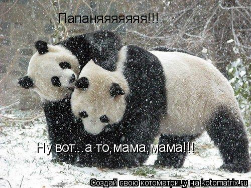 Котоматрица: Папаняяяяяяя!!! Ну вот...а то,мама,мама!!!