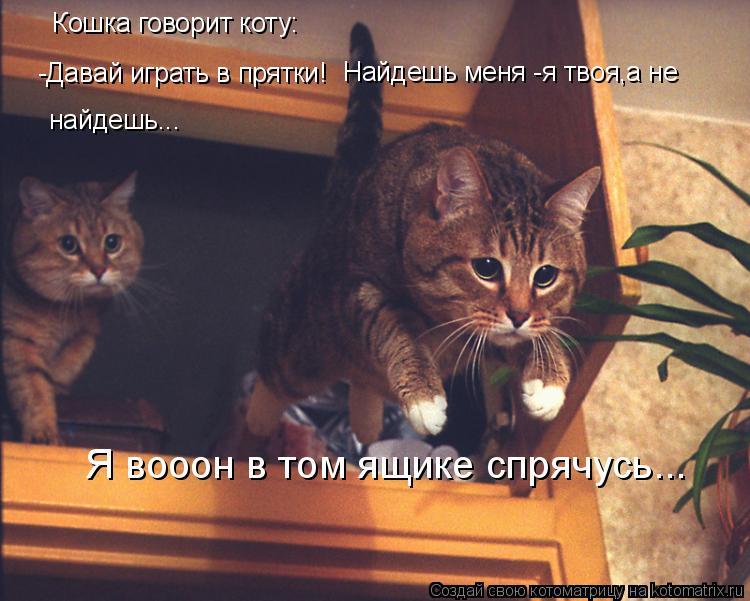 Котоматрица: Кошка говорит коту: -Давай играть в прятки! Найдешь меня -я твоя,а не найдешь...  Я вооон в том ящике спрячусь...