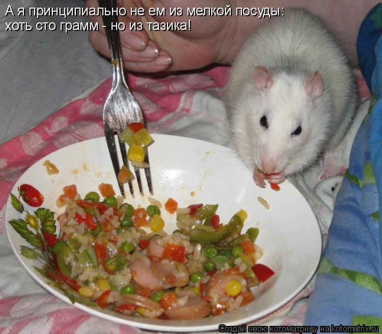 Котоматрица: А я принципиально не ем из мелкой посуды: хоть сто грамм - но из тазика!