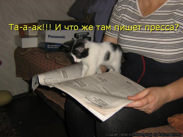 Котоматрица: Та-а-ак!!! И что же там пишет пресса?