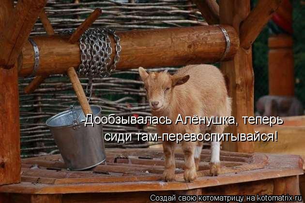 Котоматрица: -Дообзывалась Алёнушка, теперь  сиди там-перевоспитывайся!