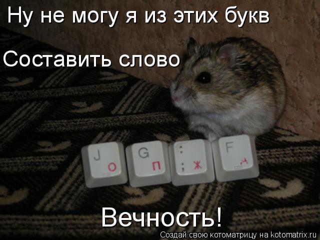 Котоматрица: Ну не могу я из этих букв Составить слово Вечность!