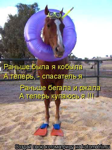 Котоматрица: Раньше была я кобыла А теперь, - спасатель я Раньше бегала и ржала А теперь купаюсь я !!!