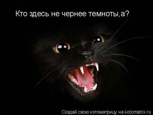 Котоматрица: Кто здесь не чернее темноты,а?
