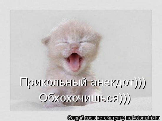 Котоматрица: Прикольный анекдот))) Обхохочишься)))
