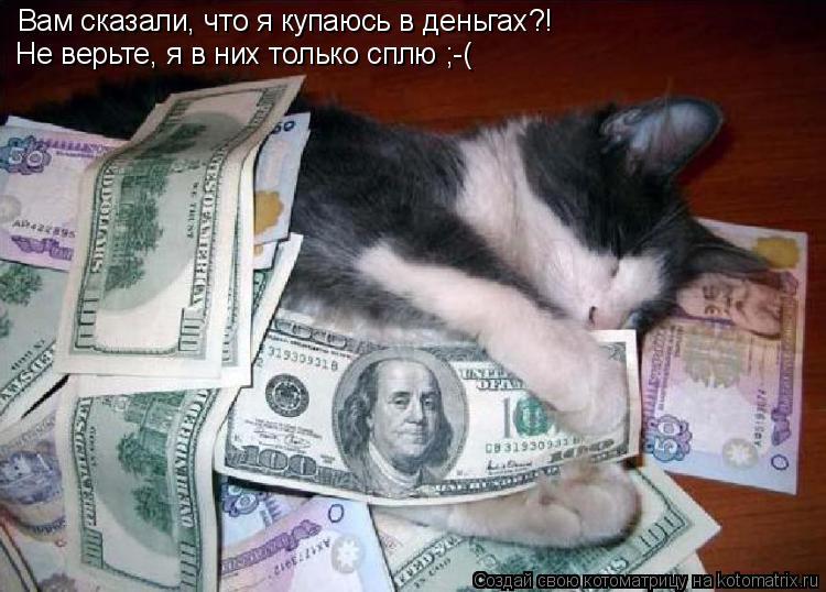 Котоматрица: Вам сказали, что я купаюсь в деньгах?! Не верьте, я в них только сплю ;-(