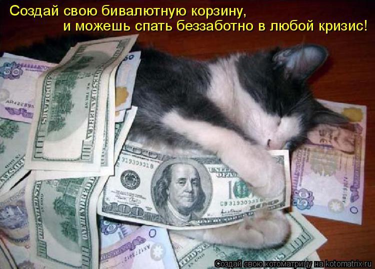 Котоматрица: Создай свою бивалютную корзину, и можешь спать беззаботно в любой кризис!