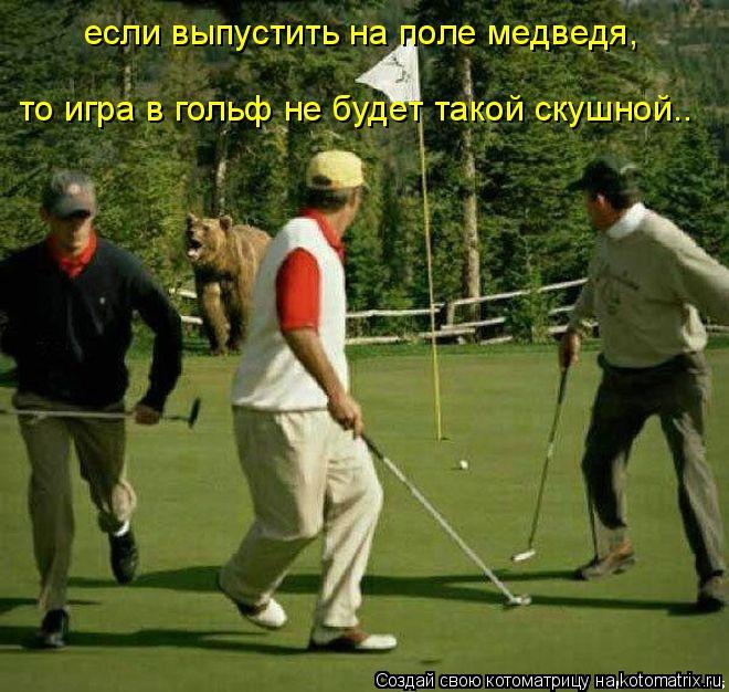 Котоматрица: если выпустить на поле медведя, то игра в гольф не будет такой скушной..