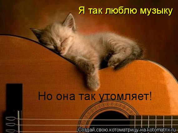 Котоматрица: Я так люблю музыку  Но она так утомляет!