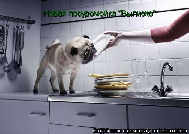 """Котоматрица: Новая посудомойка """"Вылизко"""""""