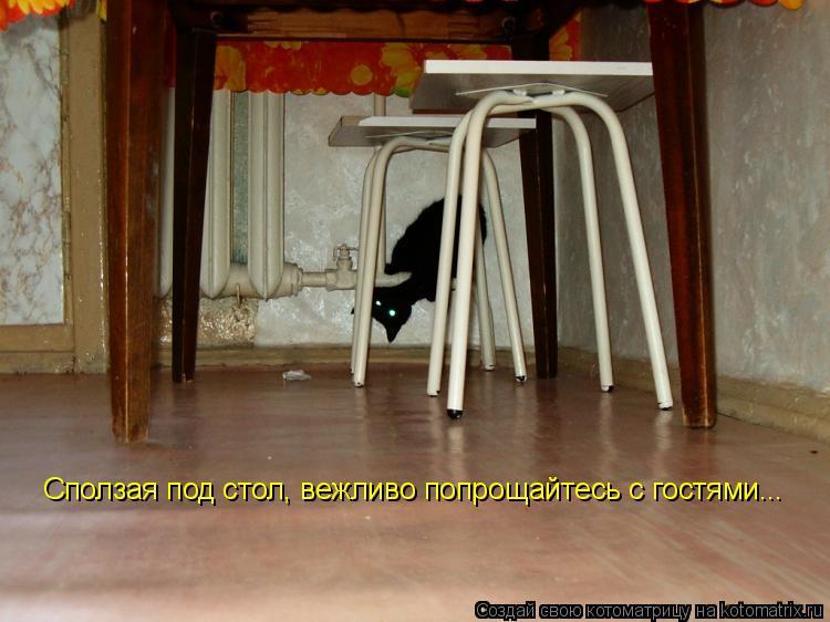 Котоматрица: Сползая под стол, вежливо попрощайтесь с гостями...