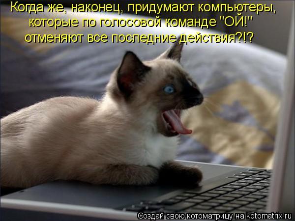 """Котоматрица: Когда же, наконец, придумают компьютеры, которые по голосовой команде """"ОЙ!"""" отменяют все последние действия?!?"""