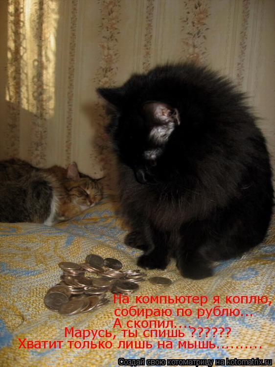 Котоматрица: На компьютер я коплю, собираю по рублю... А скопил.... Марусь, ты спишь ?????? Хватит только лишь на мышь..........