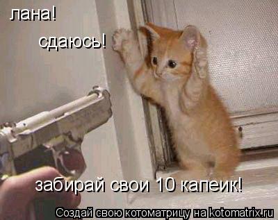 Котоматрица: лана! сдаюсь! забирай свои 10 капеик!