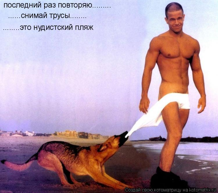 Котоматрица: последний раз повторяю......... ......снимай трусы........ ........это нудистский пляж
