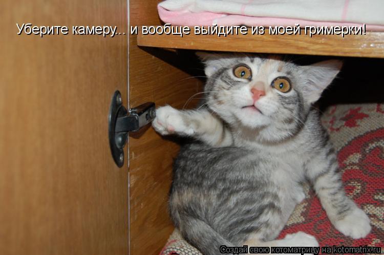 Котоматрица: Уберите камеру... и вообще выйдите из моей гримерки!