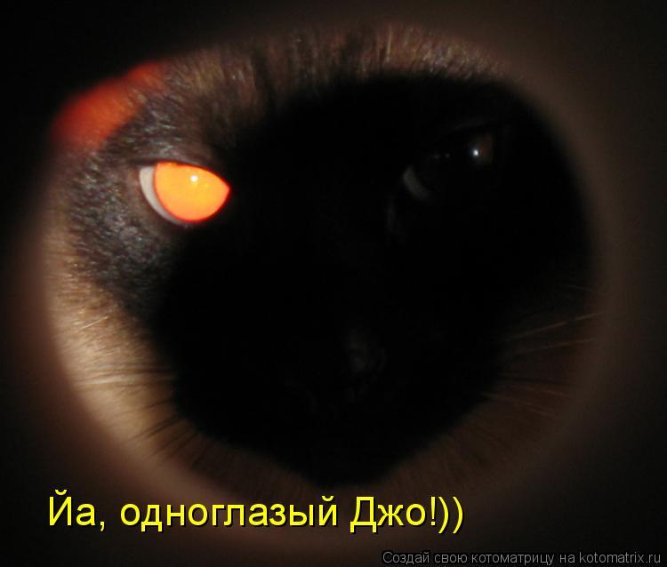 Котоматрица: Йа, одноглазый Джо!))