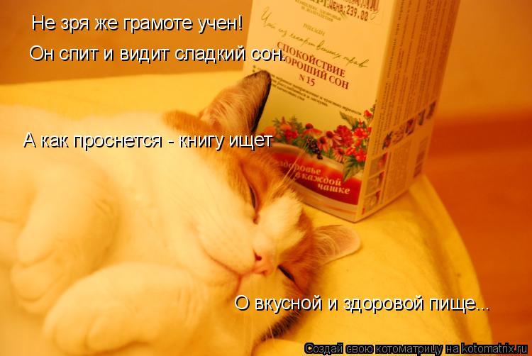 Котоматрица: Не зря же грамоте учен! Он спит и видит сладкий сон. А как проснется - книгу ищет О вкусной и здоровой пище...