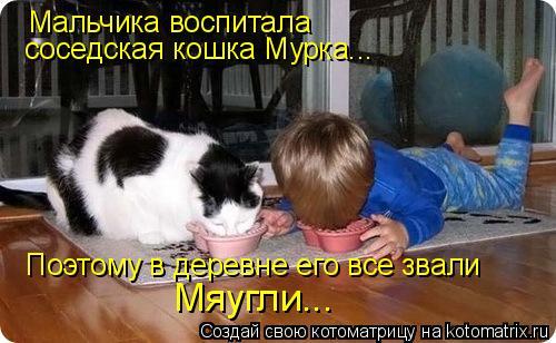 Котоматрица: Мальчика воспитала  соседская кошка Мурка... Поэтому в деревне его все звали Мяугли...