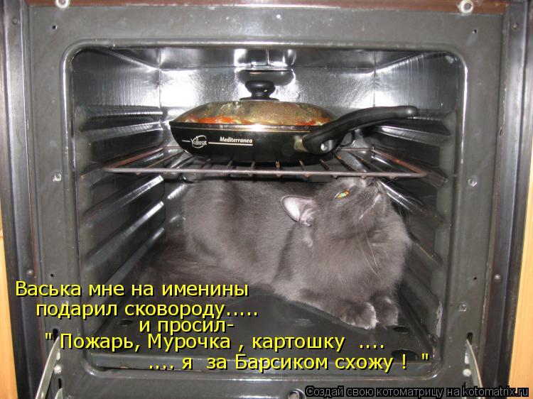"""Котоматрица: Васька мне на именины подарил сковороду..... и просил- """" Пожарь, Мурочка , картошку  ....   .... я  за Барсиком схожу !  """""""