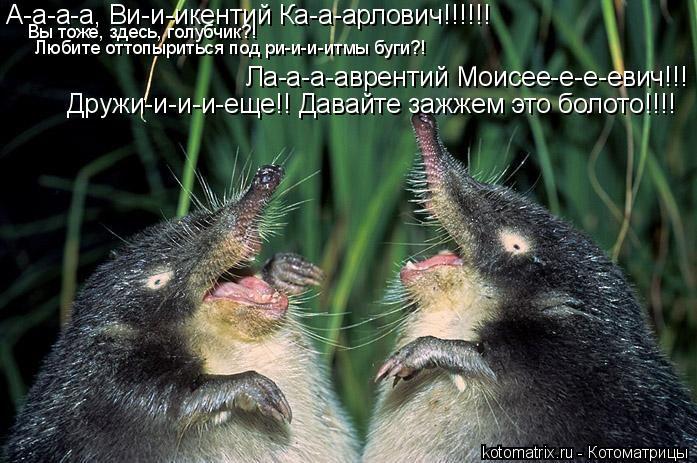 Котоматрица: А-а-а-а, Ви-и-икентий Ка-а-арлович!!!!!! Дружи-и-и-и-еще!! Давайте зажжем это болото!!!! Ла-а-а-аврентий Моисее-е-е-евич!!! Вы тоже, здесь, голубчик?!