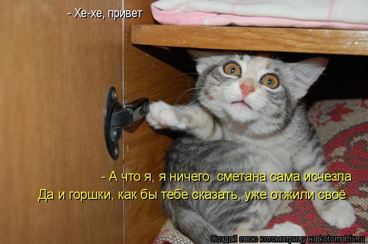 Котоматрица: - Хе-хе, привет - А что я, я ничего, сметана сама исчезла  Да и горшки, как бы тебе сказать, уже отжили своё
