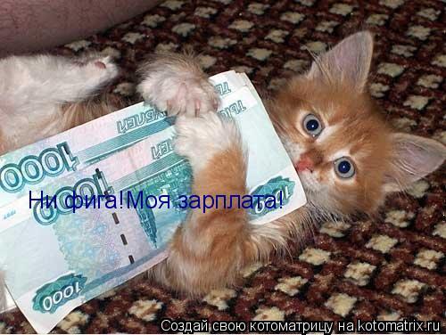 Котоматрица: Ни фига!Моя зарплата!