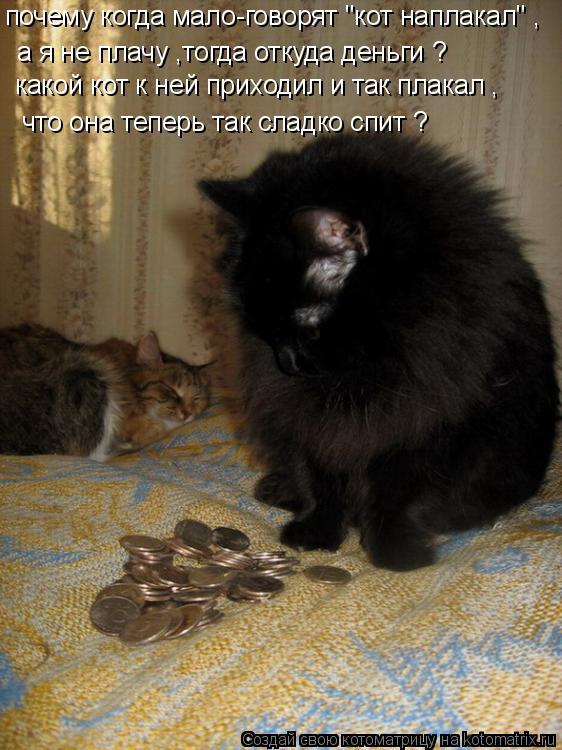 """Котоматрица: почему когда мало-говорят """"кот наплакал"""" , а я не плачу ,тогда откуда деньги ? какой кот к ней приходил и так плакал , что она теперь так сладко"""