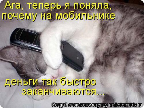 Котоматрица: заканчиваются... Ага, теперь я поняла, почему на мобильнике деньги так быстро