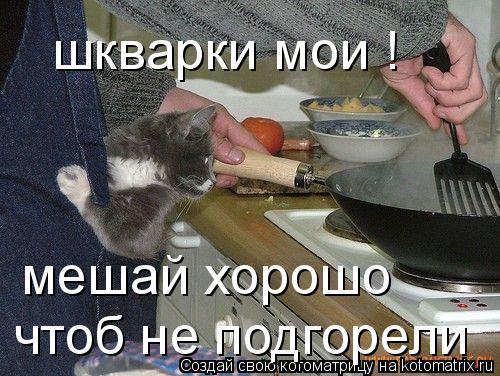 Котоматрица: шкварки мои !  мешай хорошо чтоб не подгорели
