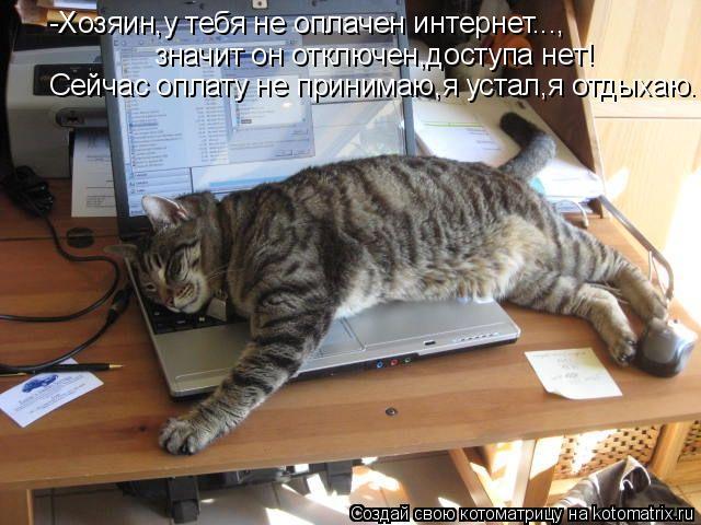 Котоматрица: -Хозяин,у тебя не оплачен интернет..., значит он отключен,доступа нет! Сейчас оплату не принимаю,я устал,я отдыхаю.