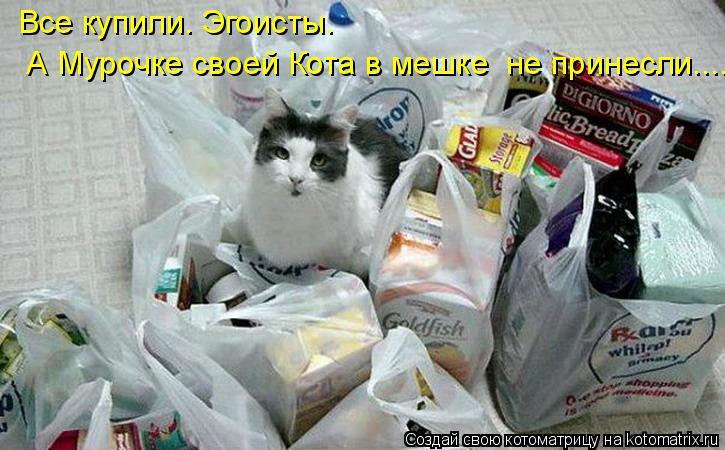 Котоматрица: Все купили. Эгоисты.  А Мурочке своей Кота в мешке  не принесли.....