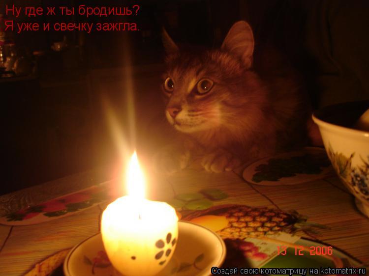 Котоматрица: Ну где ж ты бродишь? Я уже и свечку зажгла.