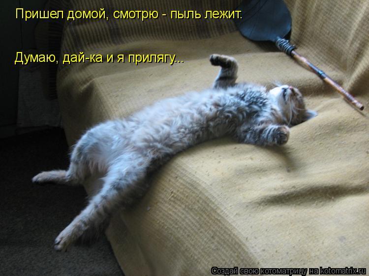 Котоматрица: Пришел домой, смотрю - пыль лежит. Думаю, дай-ка и я прилягу...