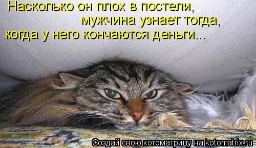 Котоматрица: Насколько он плох в постели, мужчина узнает тогда, когда у него кончаются деньги...