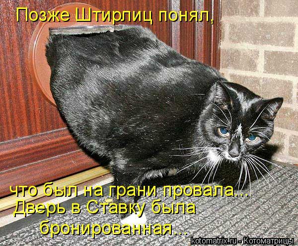 Котоматрица: Позже Штирлиц понял, что был на грани провала... Дверь в Ставку была  бронированная...