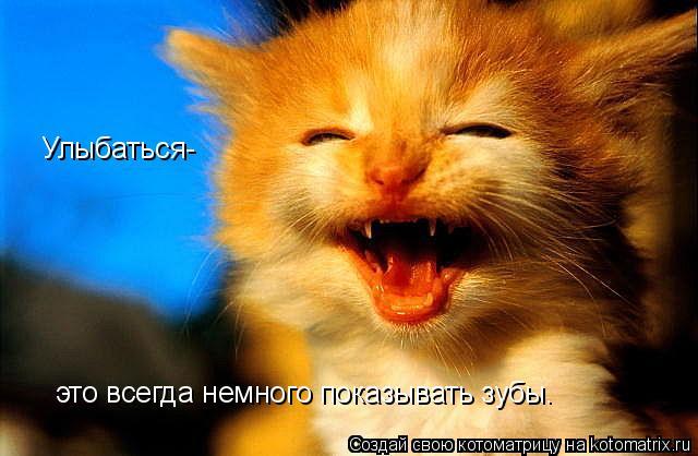 Котоматрица: Улыбаться-  Улыбаться- это всегда немного показывать зубы.