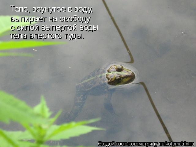 Котоматрица: Тело, всунутое в воду, выпирает на свободу с силой выпертой воды тела впертого туды.