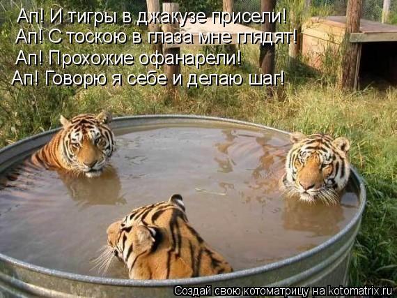 Котоматрица: Ап! И тигры в джакузе присели! Ап! С тоскою в глаза мне глядят! Ап! Прохожие офанарели! Ап! Говорю я себе и делаю шаг!