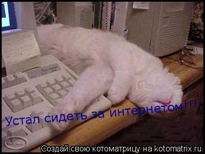 Котоматрица: Устал сидеть за интернетом!!!