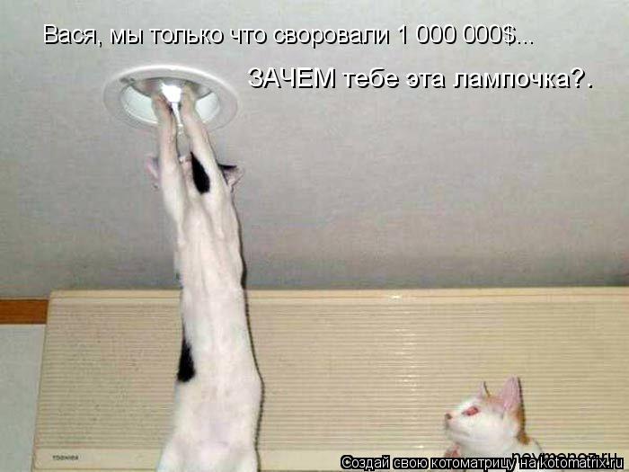 Котоматрица: Вася, мы только что своровали 1 000 000$... ЗАЧЕМ тебе эта лампочка?.