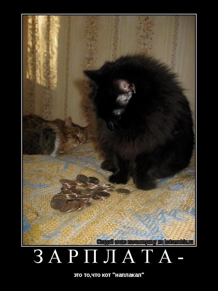 """Котоматрица: Зарплата- это то,что кот """"наплакал"""""""