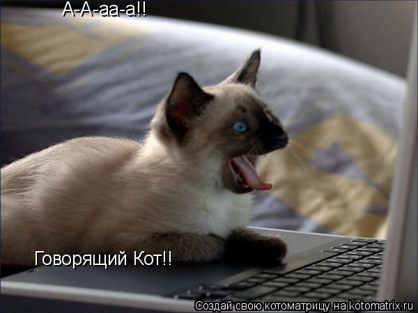 Котоматрица: А-А-аа-а!! Говорящий Кот!!
