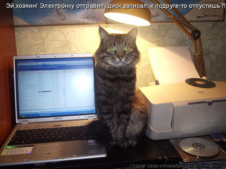 Котоматрица: Эй,хозяин! Электронку отправил, диск записал, к подруге-то отпустишь?!